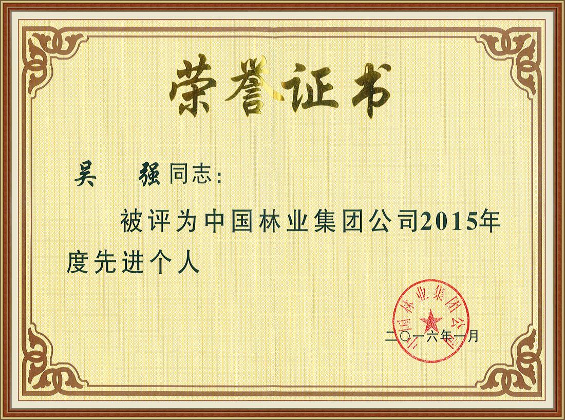 中国林业集团公司2015年度先进个人